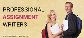 Professional assignment writers for drafting your academic paper