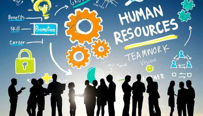 roles and responsibilities of Human resource
