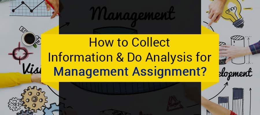 management assignment.